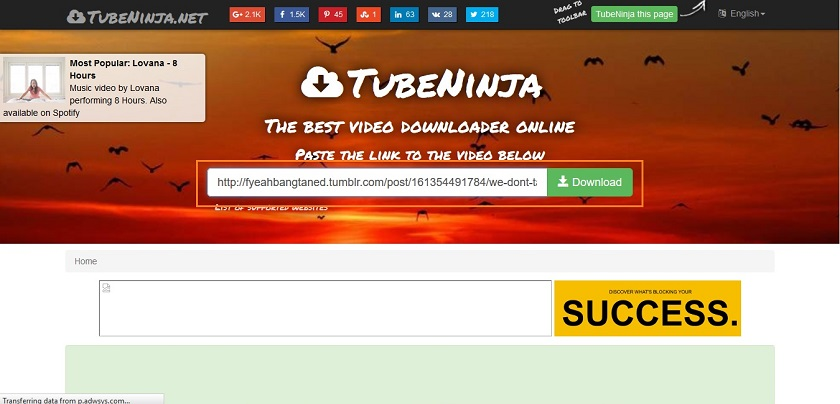 Download Movies from Tumblr - Paste Tumblr Movie URL