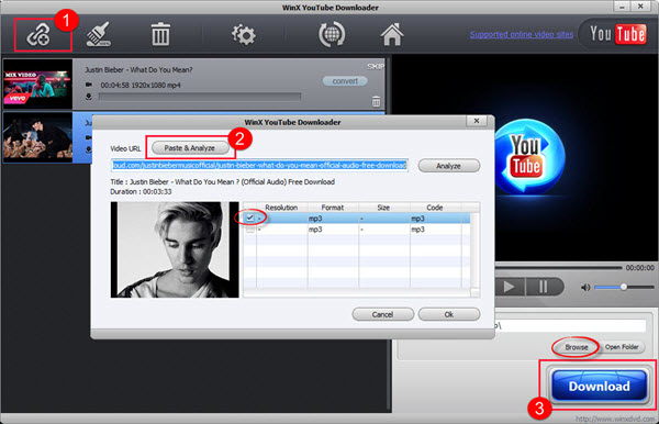 deezer mp3 downloader - WinX YouTube Downloader
