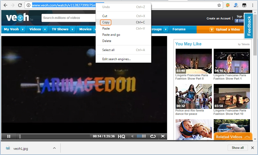 veoh video downloader - download video with url