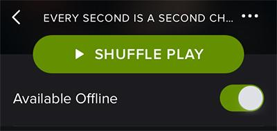 Listen to Spotify on iPhone Offline-connect wifi