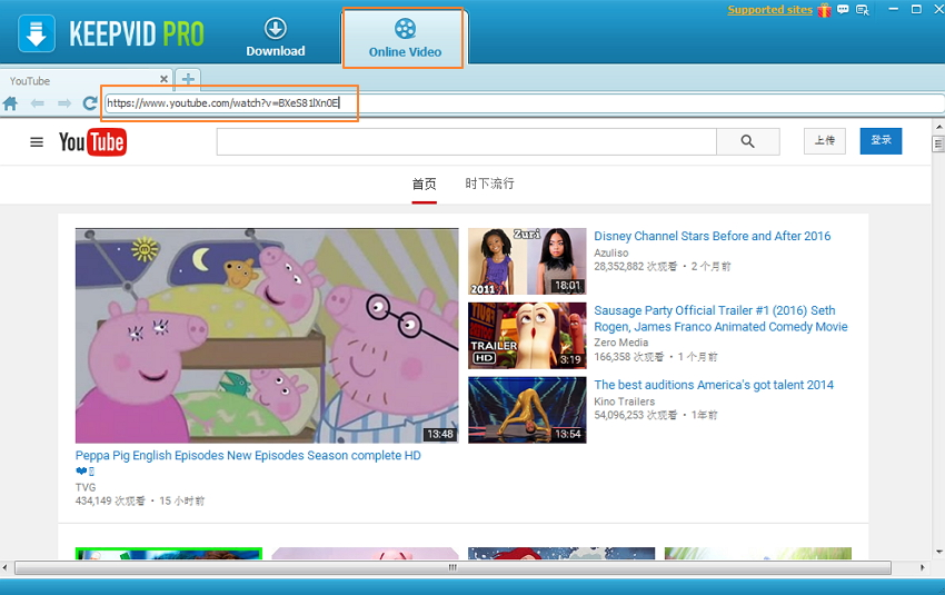 Download video from YouTube/websites to PC-Online Video